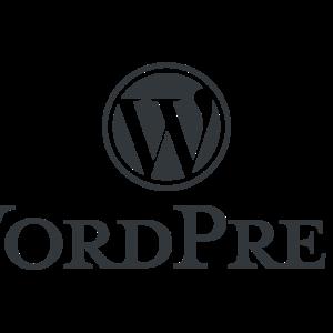 Corso WordPress per la creazione di siti web
